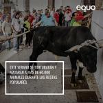 Instamos a los municipios a celebrar unas fiestas populares sin maltrato animal